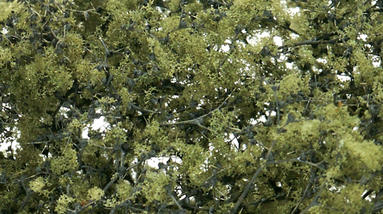Fine Leaf Foliage, Olive Green